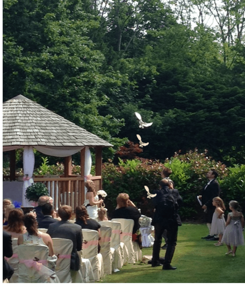 Wedding dove release at Bannatyne Hotel in Eastbourne